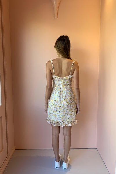 Hansen & Gretel Lea Dress in Garden Print