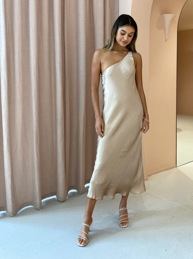 Third Form Waters Edge One Shoulder Maxi in Misty Rose