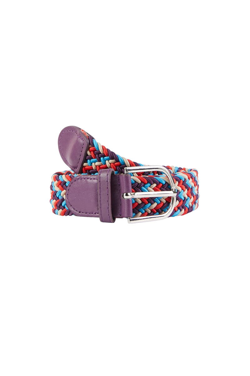 Multicolor Braided Elastic Belt