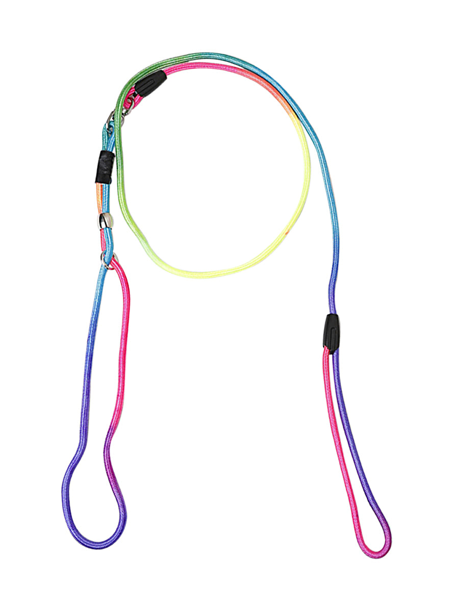 RAINBOW WALKIES dog lead