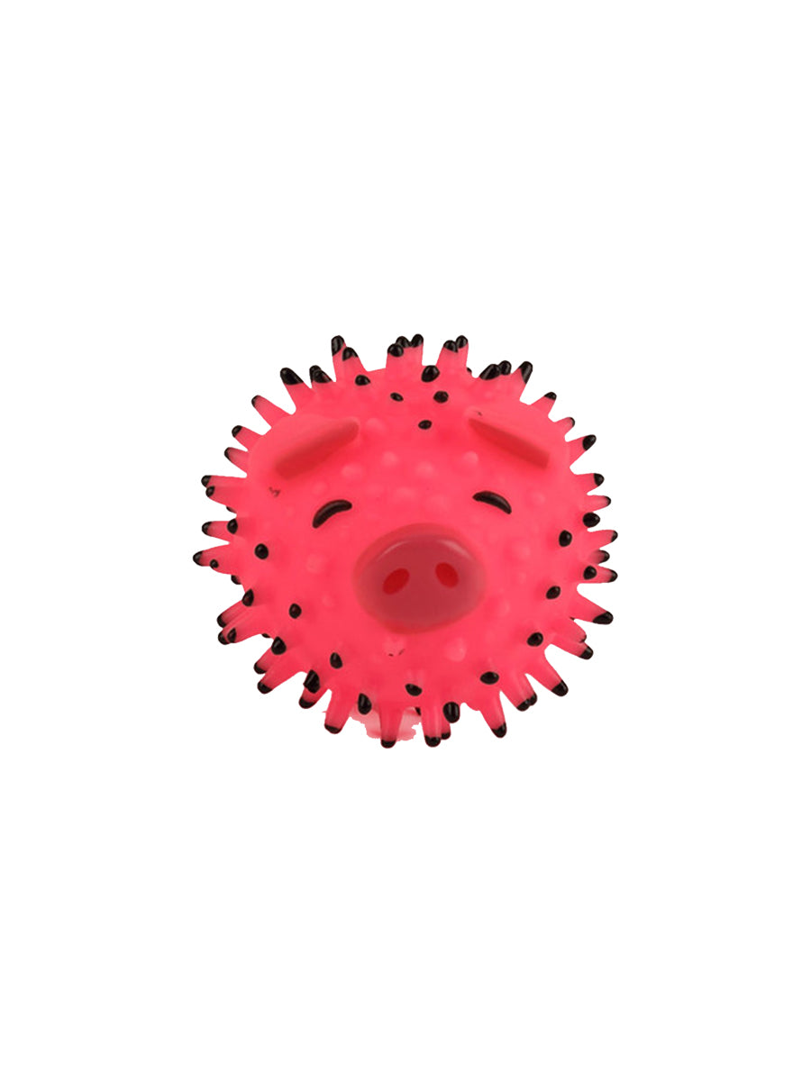Oink Pet Toy
