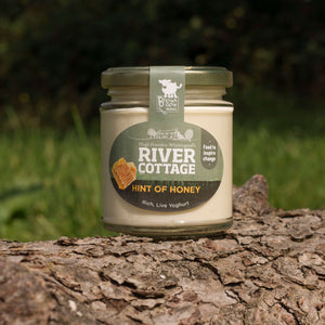 River Cottage Somerset Honey Yoghurt