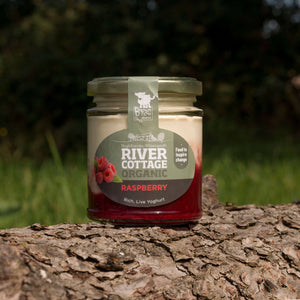 River Cottage Raspberry Yoghurt