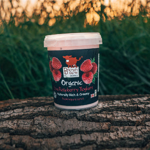 Brown Cow Organics Raspberry Organic Yoghurt