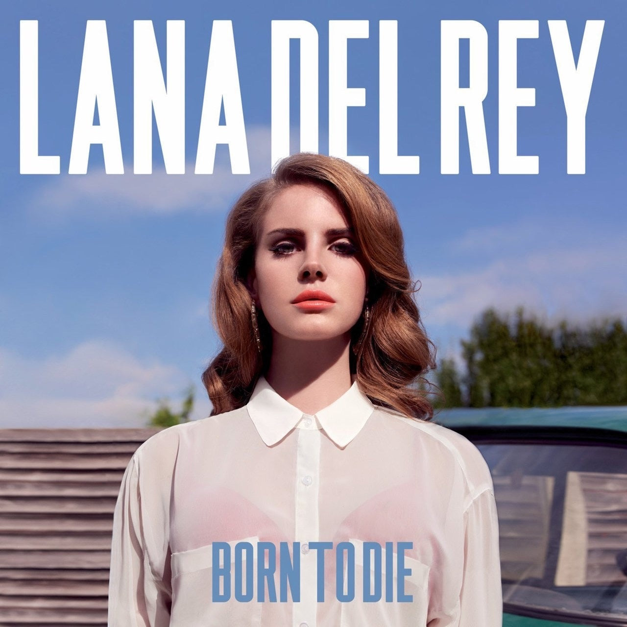 Lana Del Rey - Born To Die (2LP)
