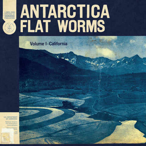 Antarctica - Flat Worms