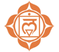 the chakra system base or root