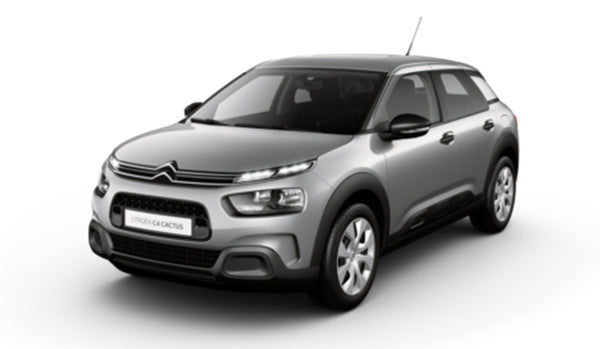 C4 Cactus PureTech 110 S&S manual Flair - Business Offer