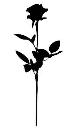 a4563f468 Black Rose Temporary Tattoo – Le Youth