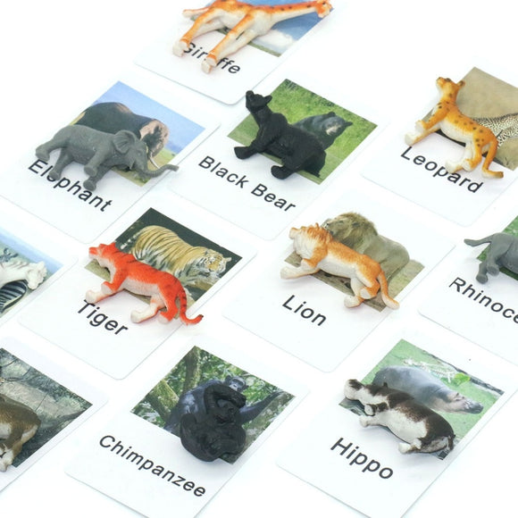 BEAUTIFUL ANIMAL OBJECTS AND MATCHING CARDS
