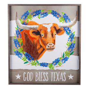 God Bless Texas Longhorn