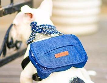 Denim Mini Pet Backpack