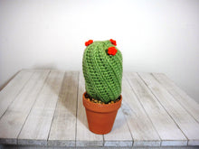 Load image into Gallery viewer, Won't Die Cacti