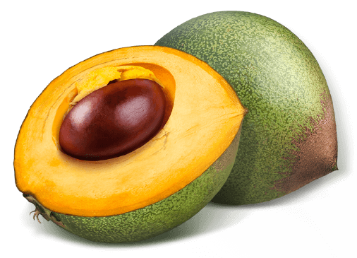Ingredient Spotlight: Lucuma