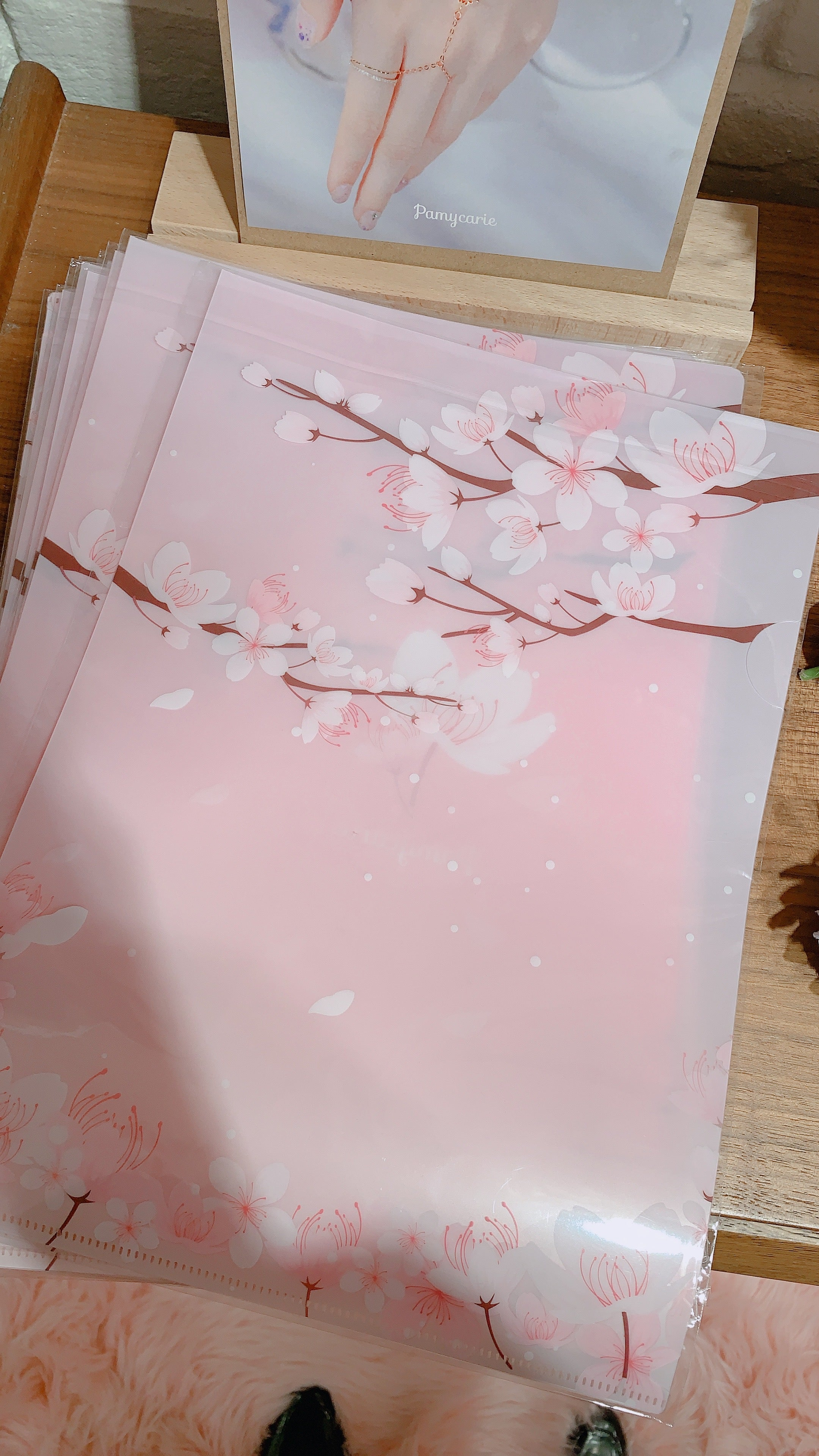 Sakura Translucent Folder