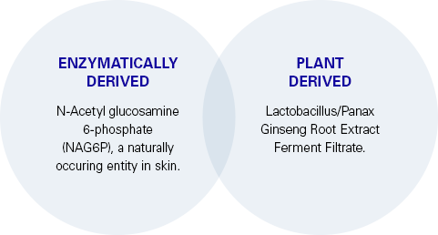 Enzymatic and Plant derived