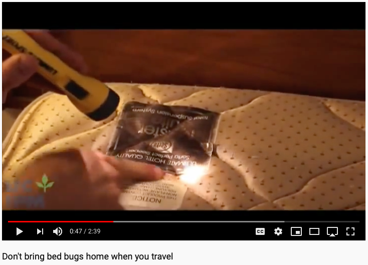 Bed Bug Free Holiday Travel Tips (with video)