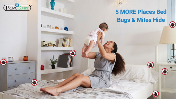 5 more places bed bugs hide (find these places to fully end bed bugs forever)
