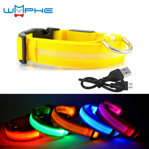USB Rechargeable LED Dog Collar Night Safety Flashing Glow Pet Dog Cat Collar With Usb Cable Charging Dogs Accessory - Big Barks