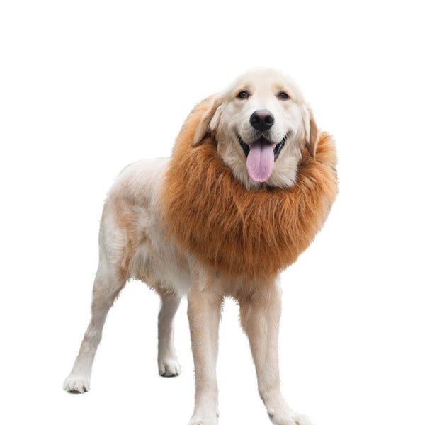 Hoopet Dog Cat Hat  Lion Cap Pet Out Casual  Big Dog  Hats Funny Pets Products - Big Barks