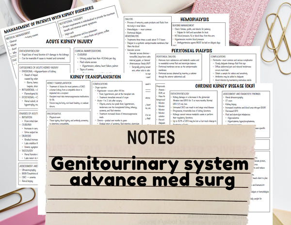 Genitourinary system - Nursing Notes Digital