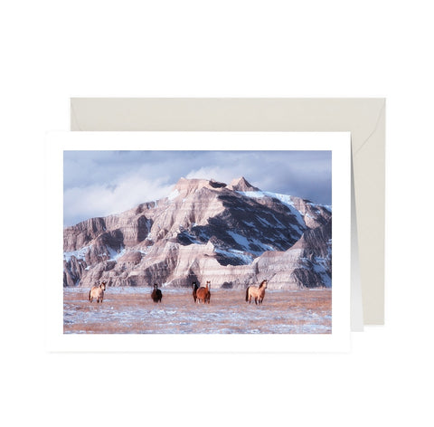 Wild Horses Note Card