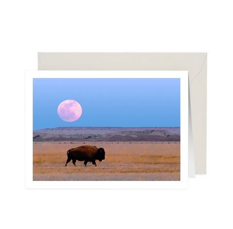 Moon Over Buffalo NoteCard