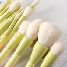 Load image into Gallery viewer, Luna Pro Color 14pcs Makeup Brushes Set
