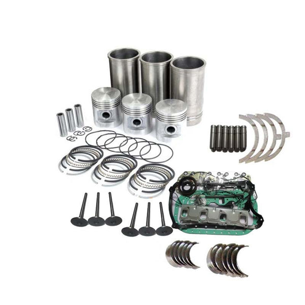 Overhaul Rebuild Kit Yanmar 3TNM74 Engine