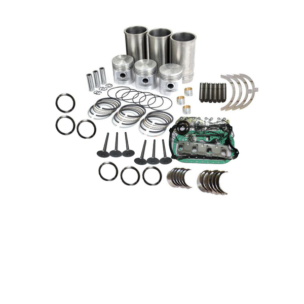 Mitsubishi S3L Cylinder Head with Engine Overhaul Kit