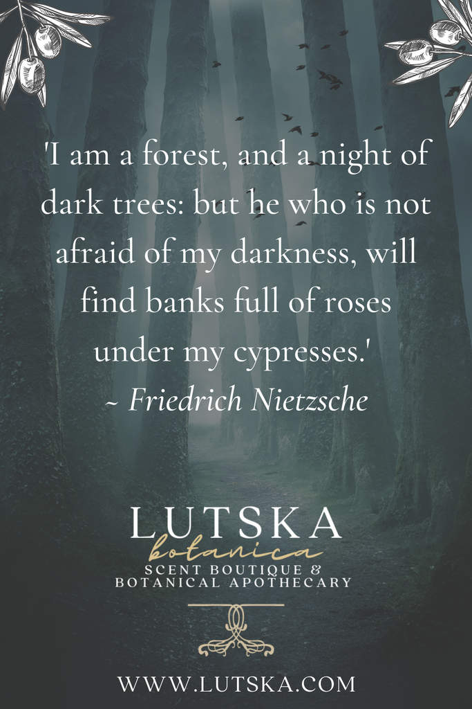 'I am a forest, and a night of dark trees: but he who is not afraid of my darkness, will find banks full of roses under my cypresses.' ~ Friedrich Nietzsche