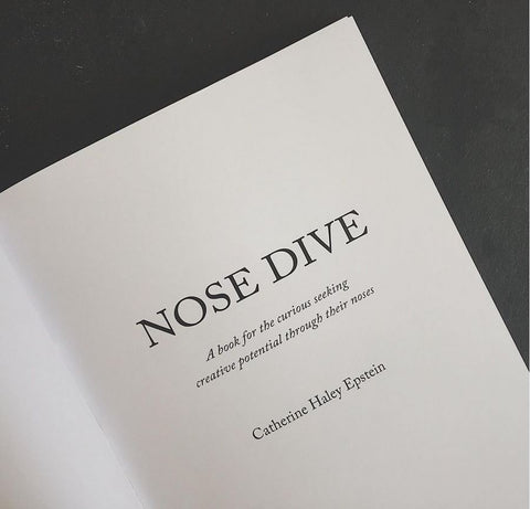 nose dive book catherine