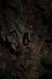 DARKWOODS - Essential Oil Blend - Cedar, Fir, Hemlock, Birch, Spruce, Juniper, Balsam, Sage