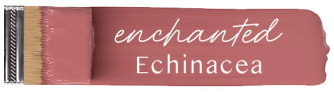Fusion mineral paint Enchanted Echinacea colour example