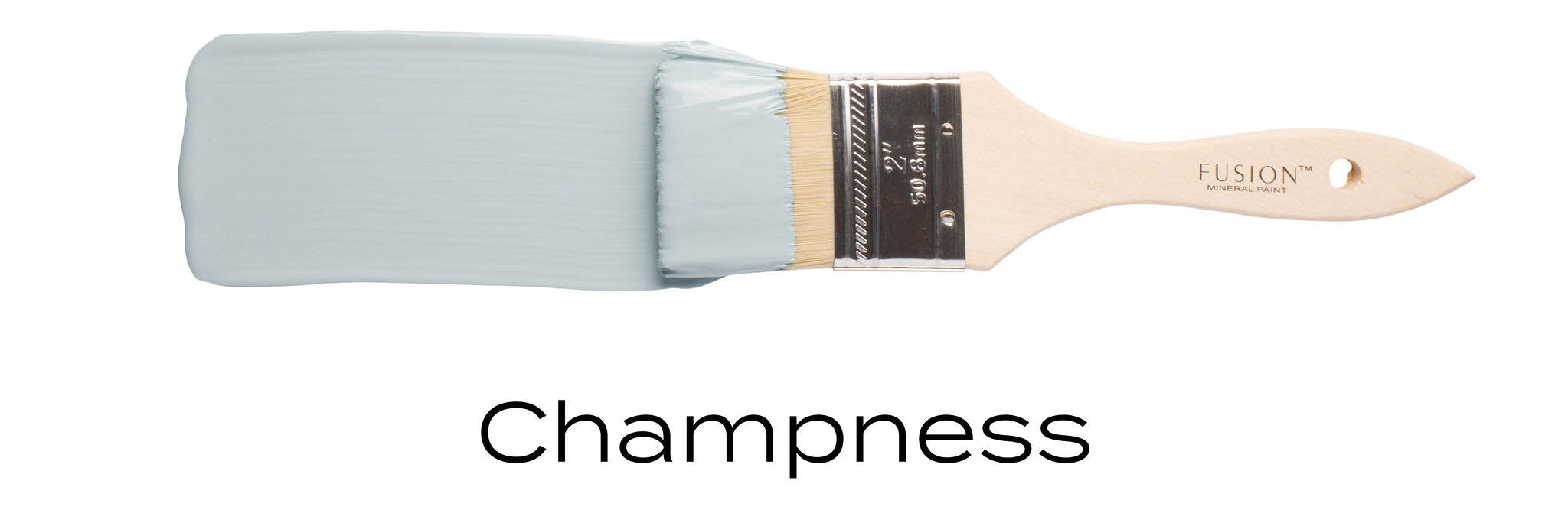 Champness fusion mineral paint example of light blue on paint brush