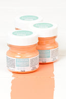 Fusion mineral paint tester pots with colour example of coral brush stroke