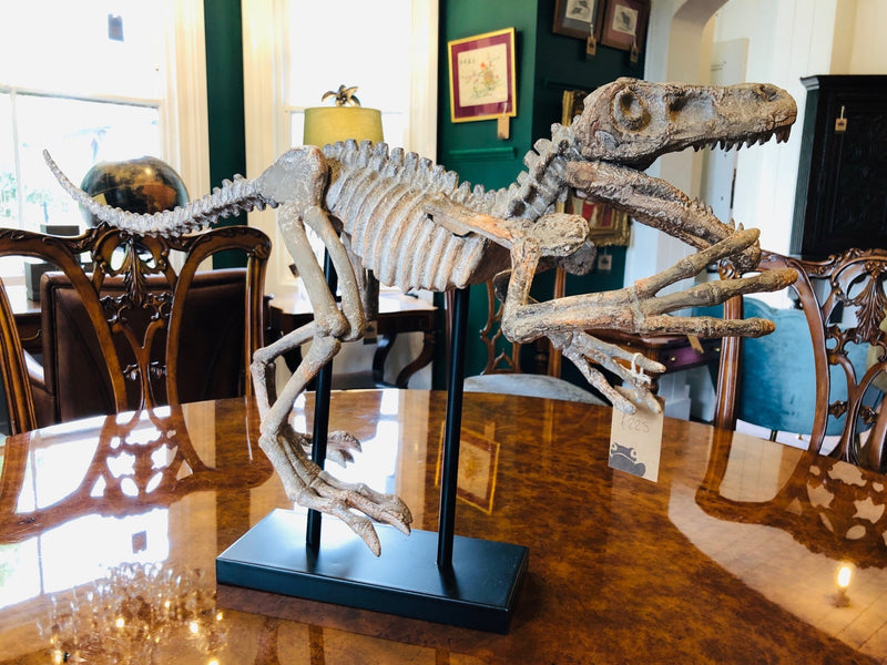 Extra Large Dinosaur Skeleton Figure on StandVintage FrogBrand New