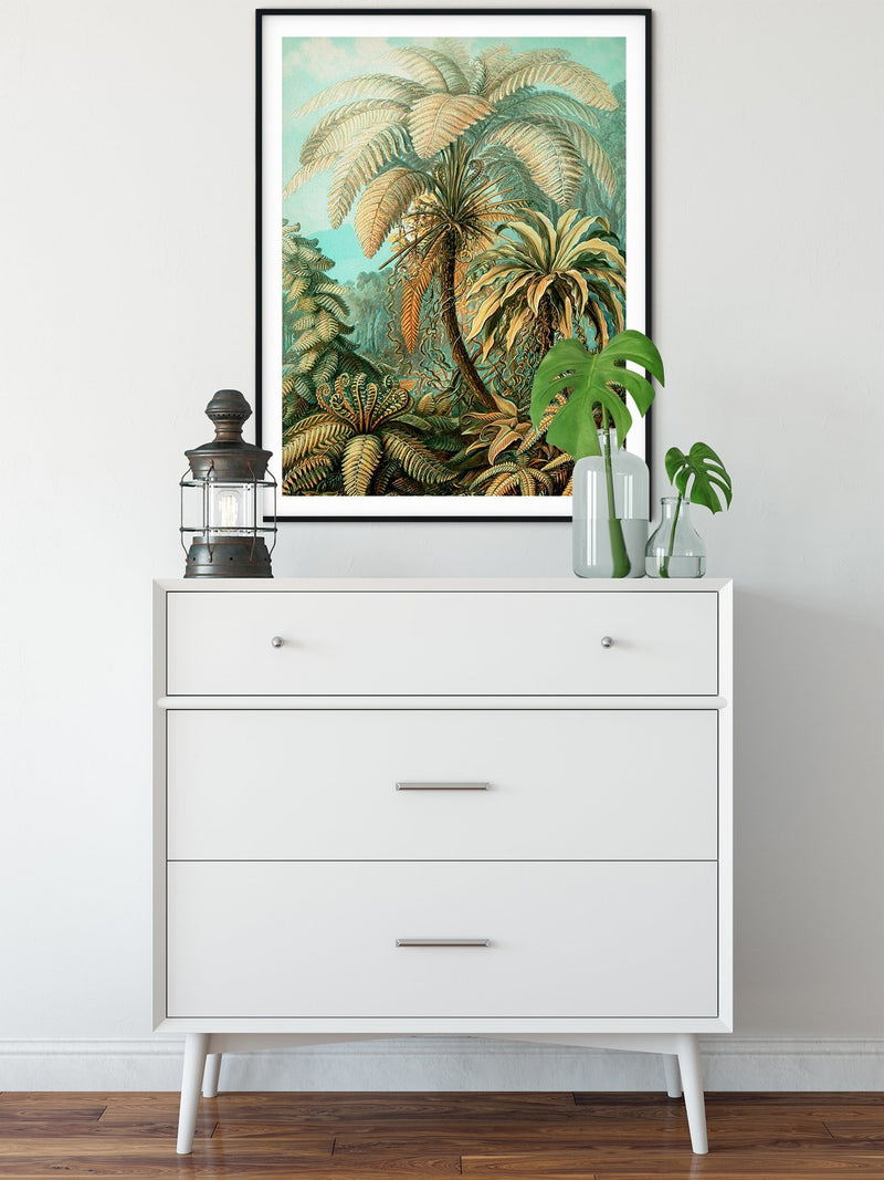 Palm Tree Poster Illustration by Ernst Haeckel Print On Canvas, Wall Hanging Decor PictureVintage FrogPictures & Prints