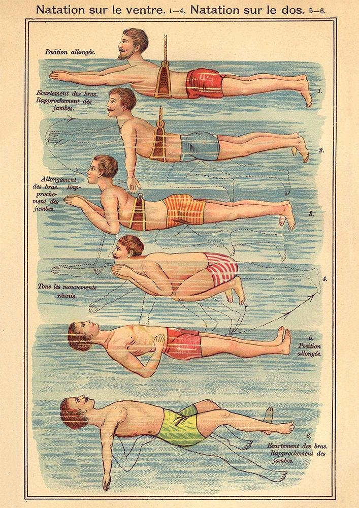 The Swimmer, Swimming Illustration Print On Canvas, Wall Hanging Decor PictureVintage FrogPictures & Prints