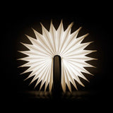 Wooden Book Light