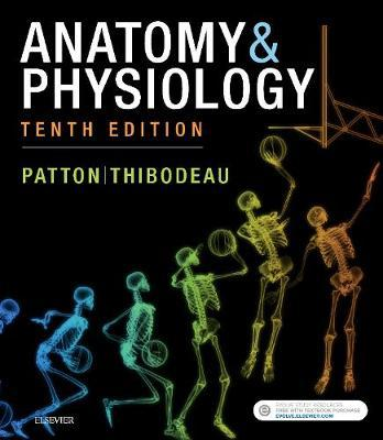 Anatomy & Physiology (includes A&P Online course) – The Book Fair