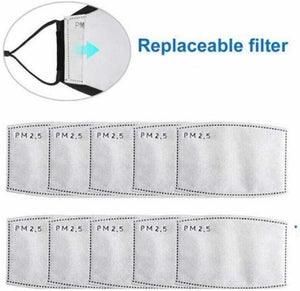 PM 2.5 Replacement Filter