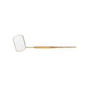 Large Gold Mirror with measuring tape - Lana Beauty Academy