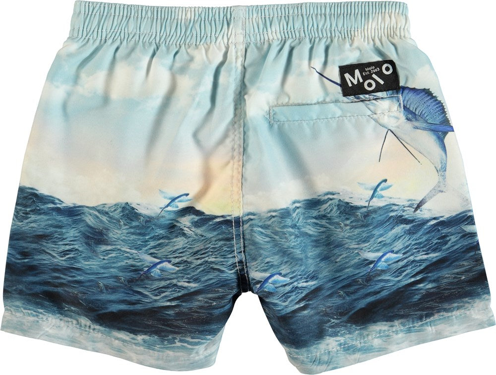 Molo Boys Board Shorts - Catch
