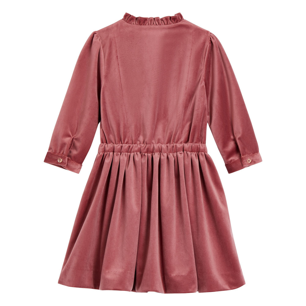 Velveteen Evelyn Dress