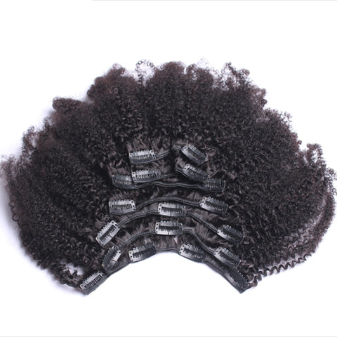 Afro Kinky Curly Clip Ins