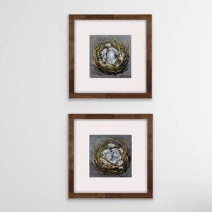 'Nests' Set of Fine Art Prints