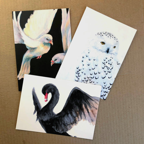 'The Birds' Collectible Art Cards