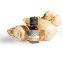 Organic Ginger Essential Oil (Zingiber Officinale) 10ml