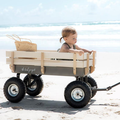 Beach Cart back in stock April 2019